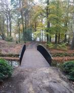 Molenbosch (2)